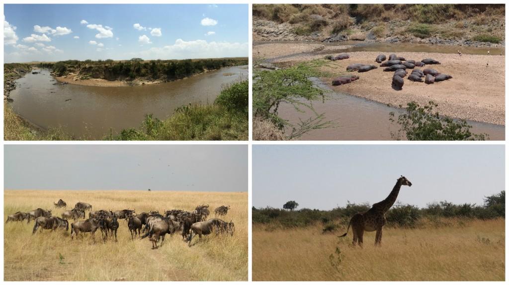 Maasai river